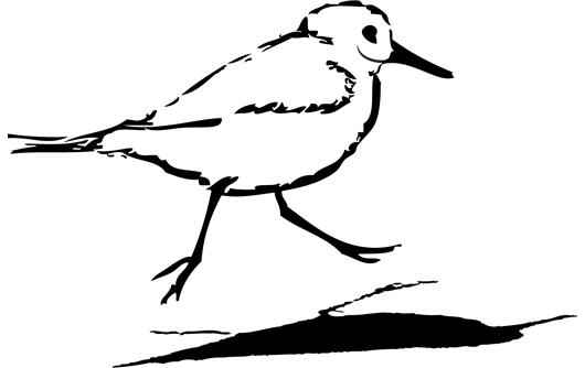 logo-strandloper