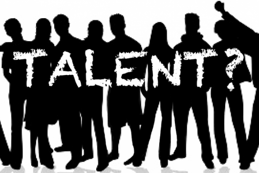 Vergroot het teampotentieel: Haal het beste uit je mensen in weinig tijd